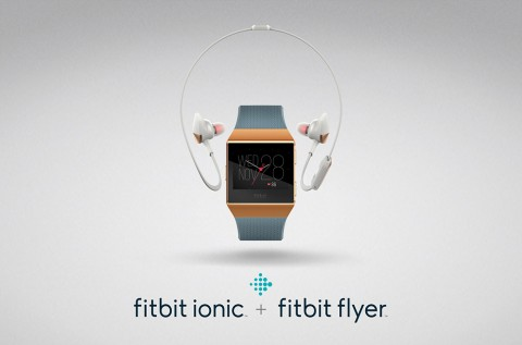 Fitbit_Ionic_Fitbit_Flyer_Lockup_Burnt_Orange_Slate_Blue